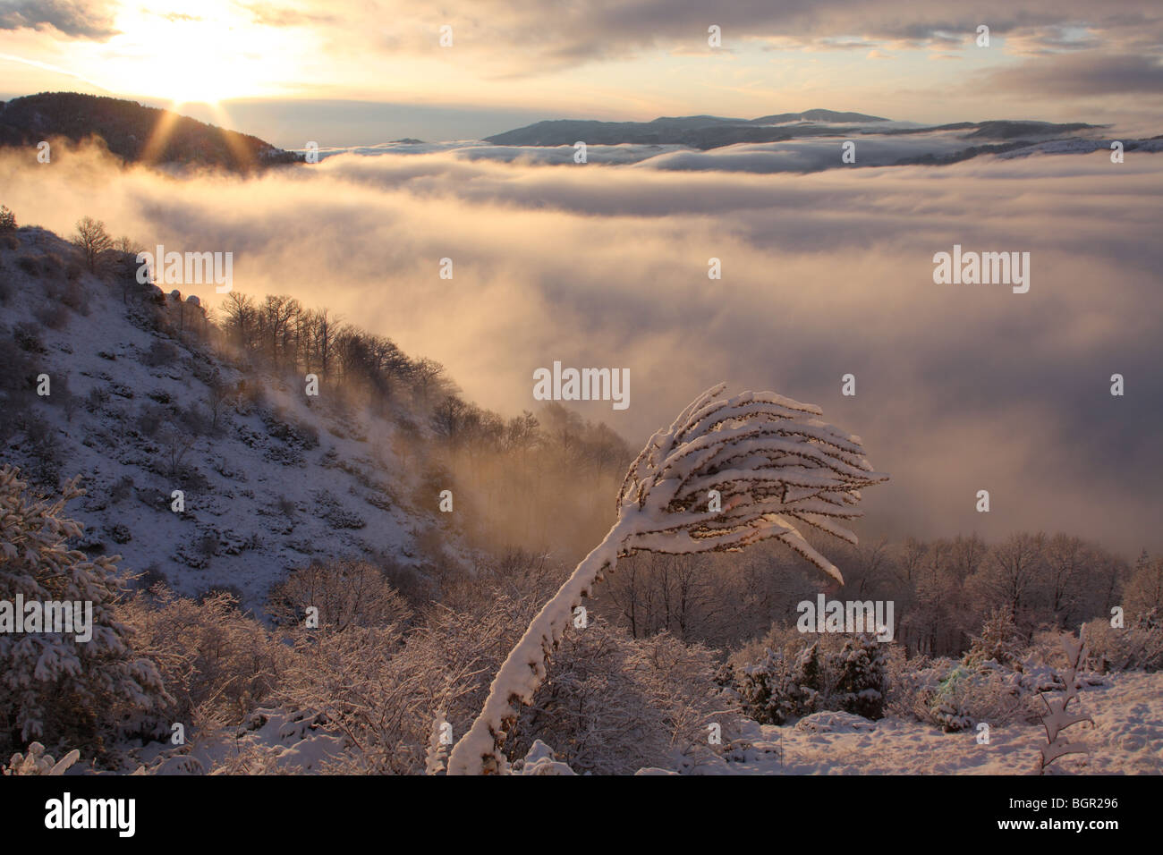 Sunrise in Central Balkan National Park (Stara planina), nature protected area, Bulgaria, Europe - Stock Image
