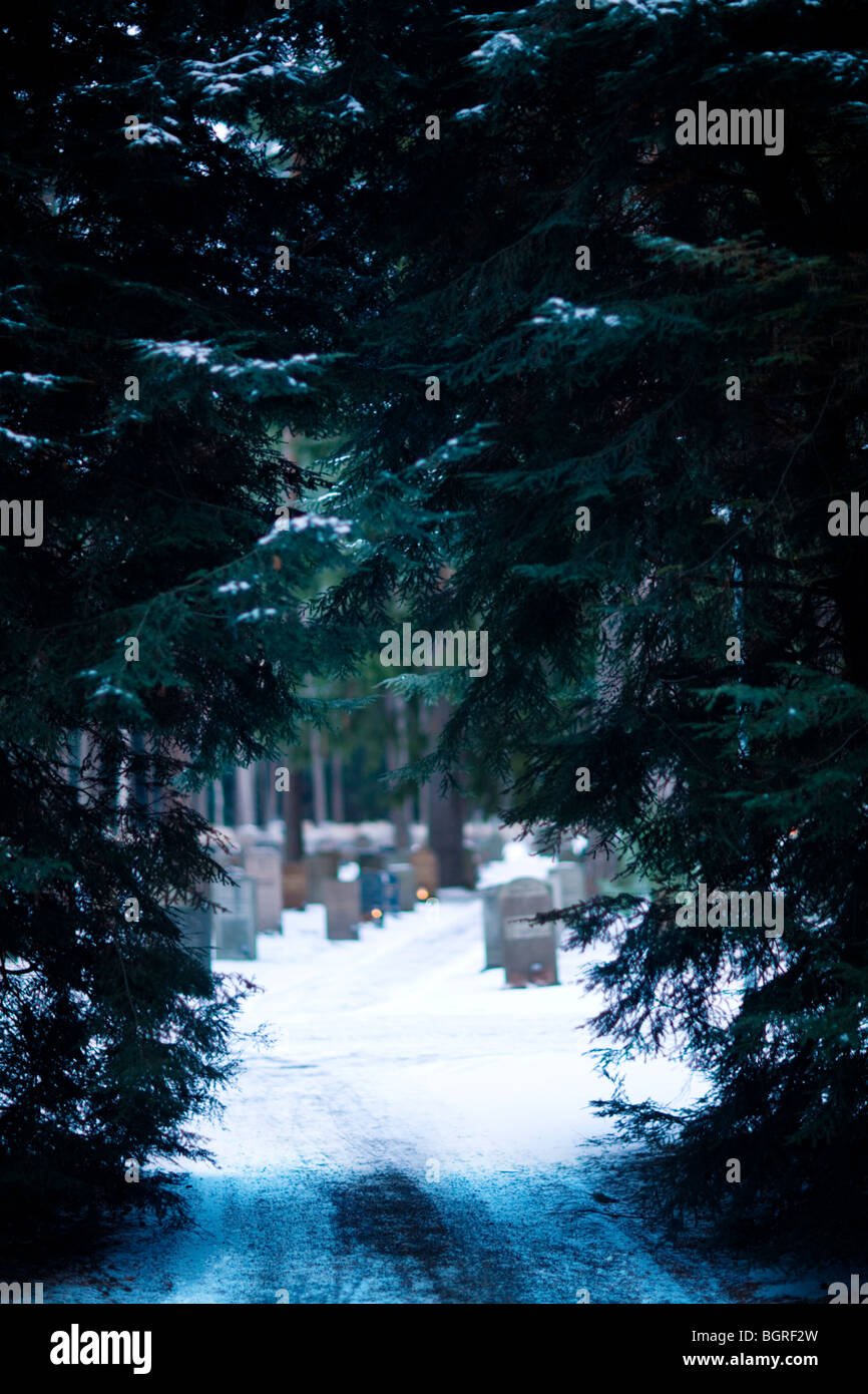 Path on a graveyard, Sweden. - Stock Image