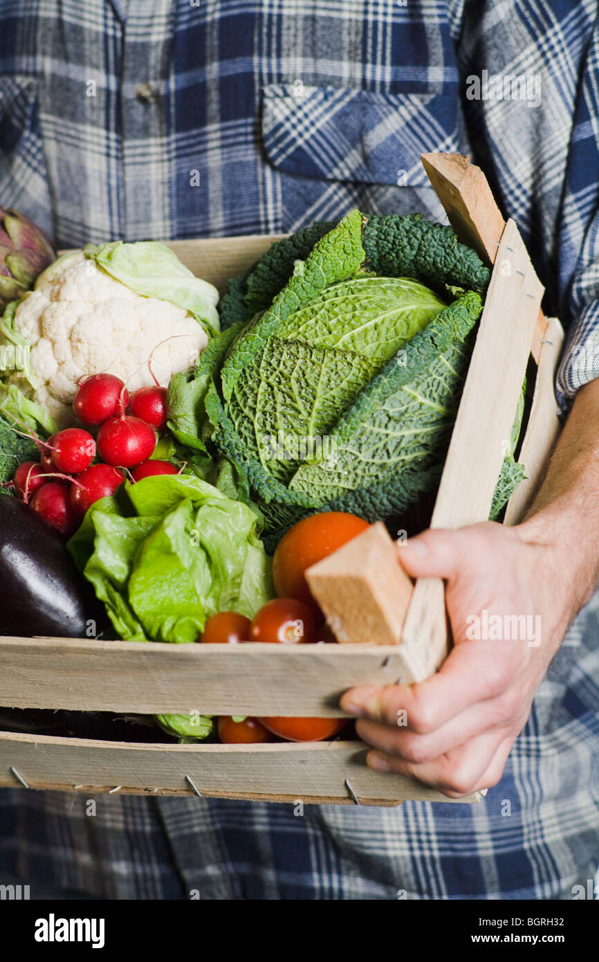 Man holding a box of vegetables. - Stock Image