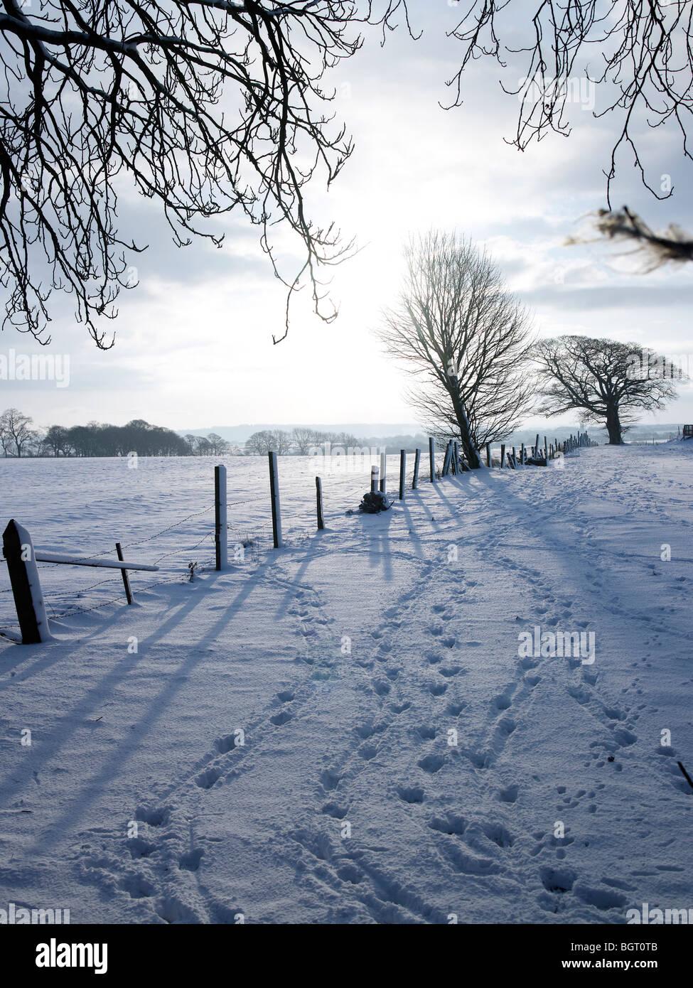 Footsteps in snow, Grange Moor, Nr Huddersfield, West Yorkshire - Stock Image