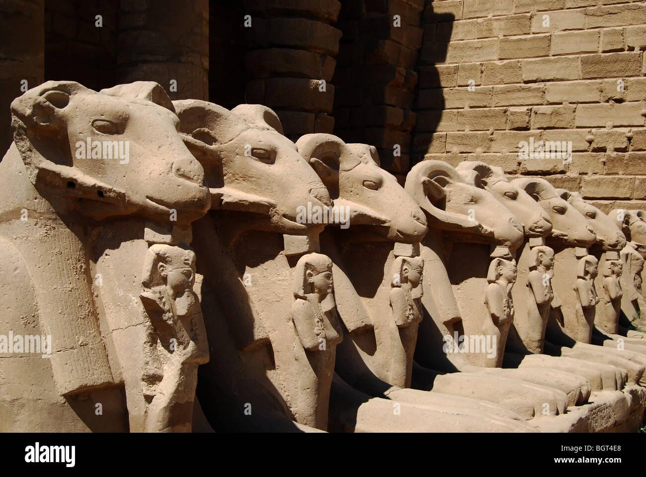 Karnak temple, Luxor Egypt number 2848 - Stock Image