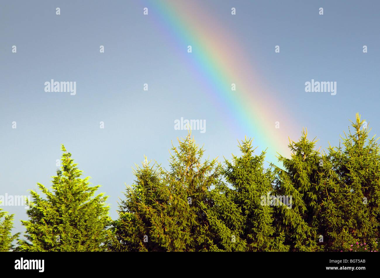 Colorful Rainbow - Stock Image
