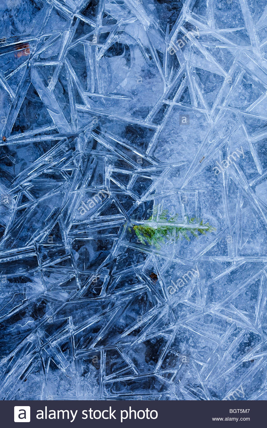 Close up of ice pattern in Rouge Park an urban wilderness in Toronto Ontario Canada Stock Photo