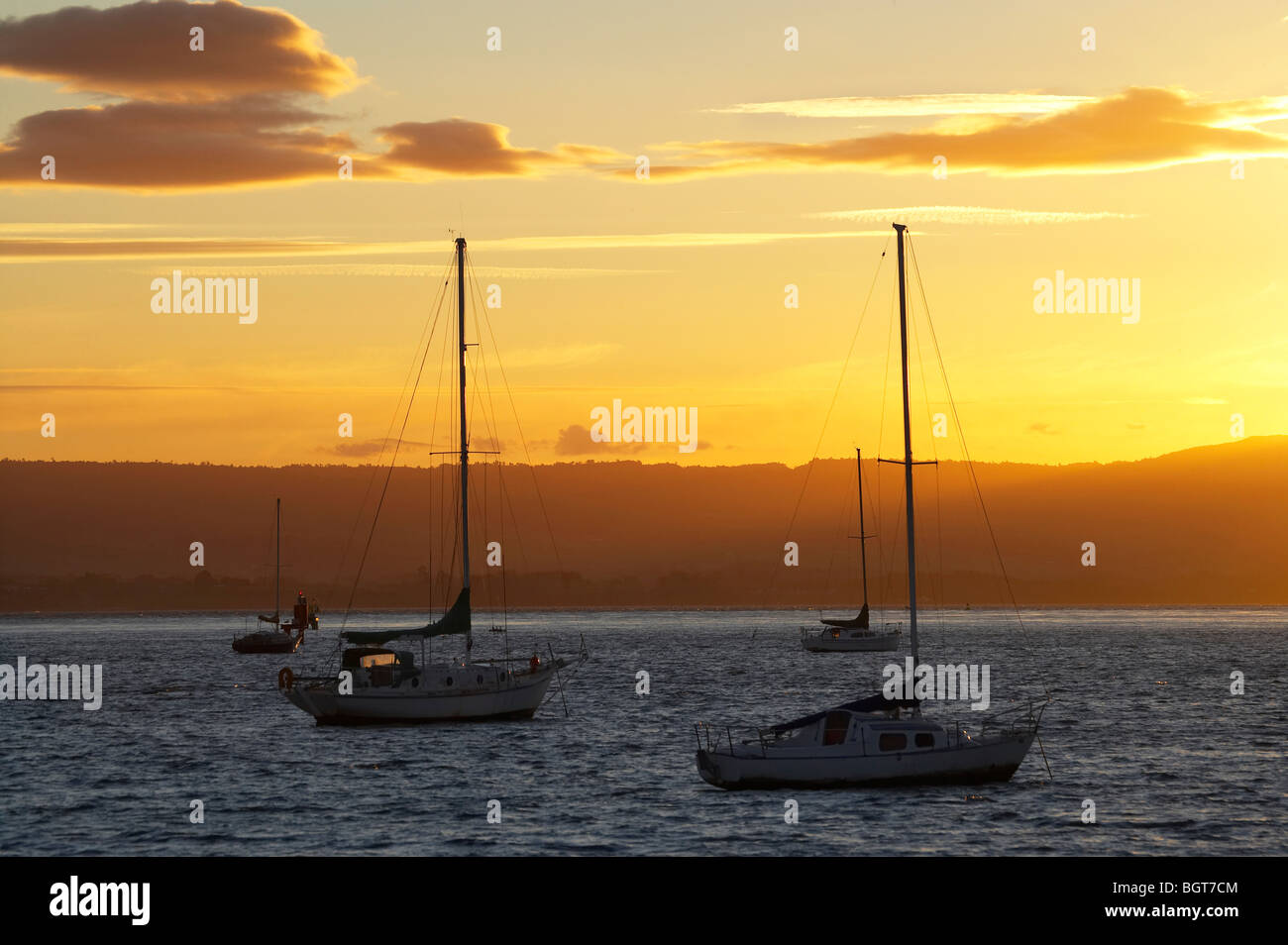Yachts at Sunset, Tauranga Harbour, Mount Maunganui, Bay of Plenty, North Island, New Zealand Stock Photo