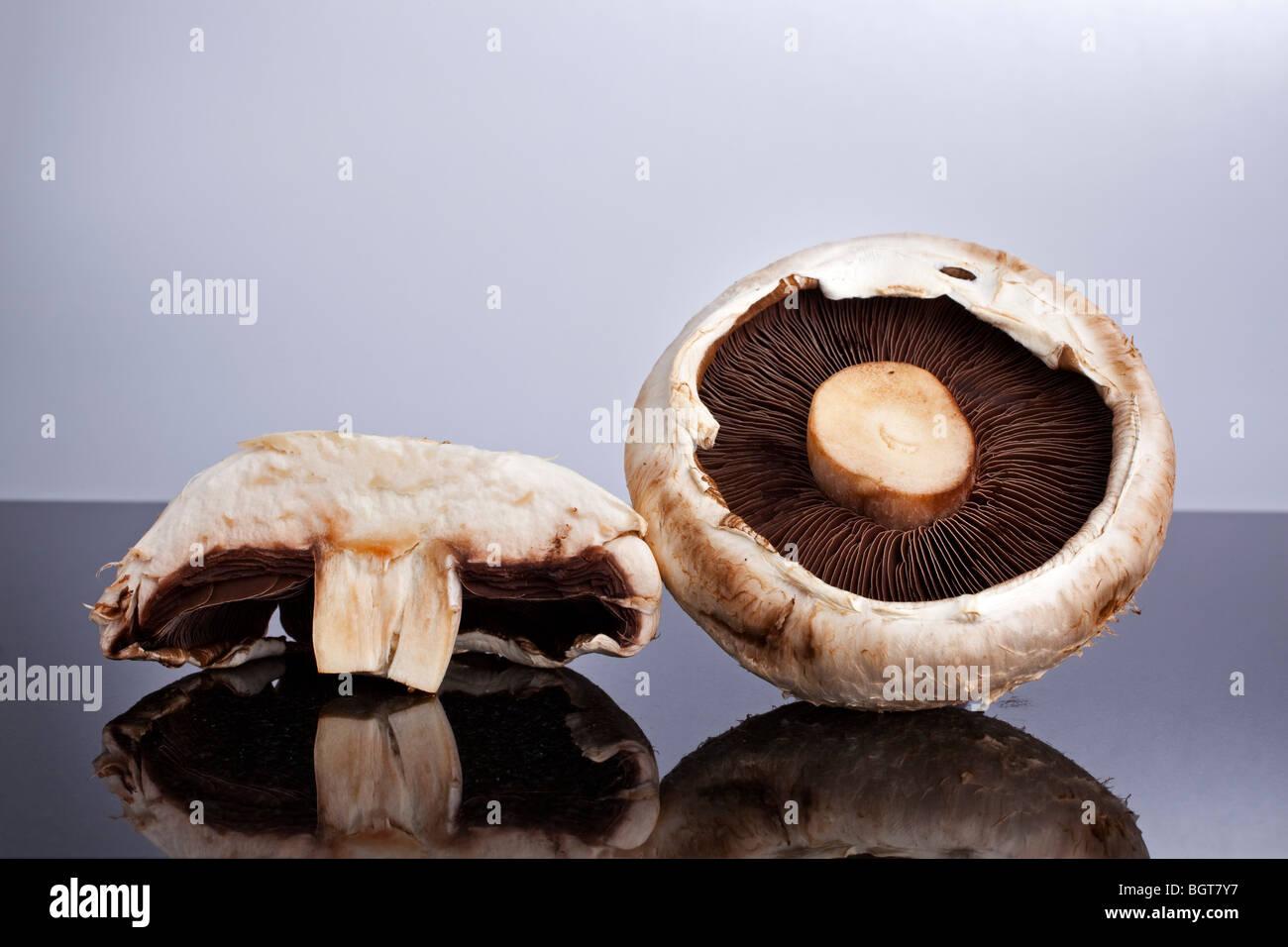 A whole and a sliced mushroom - Stock Image