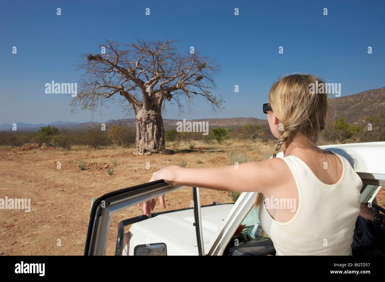 Young woman next to motor vehicle looking at Baobab tree, Epupa Falls area, Kaokoland, Namibia - Stock Image