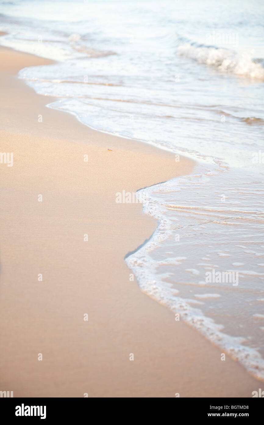 Gentle surf lapping against a golden shore - Stock Image