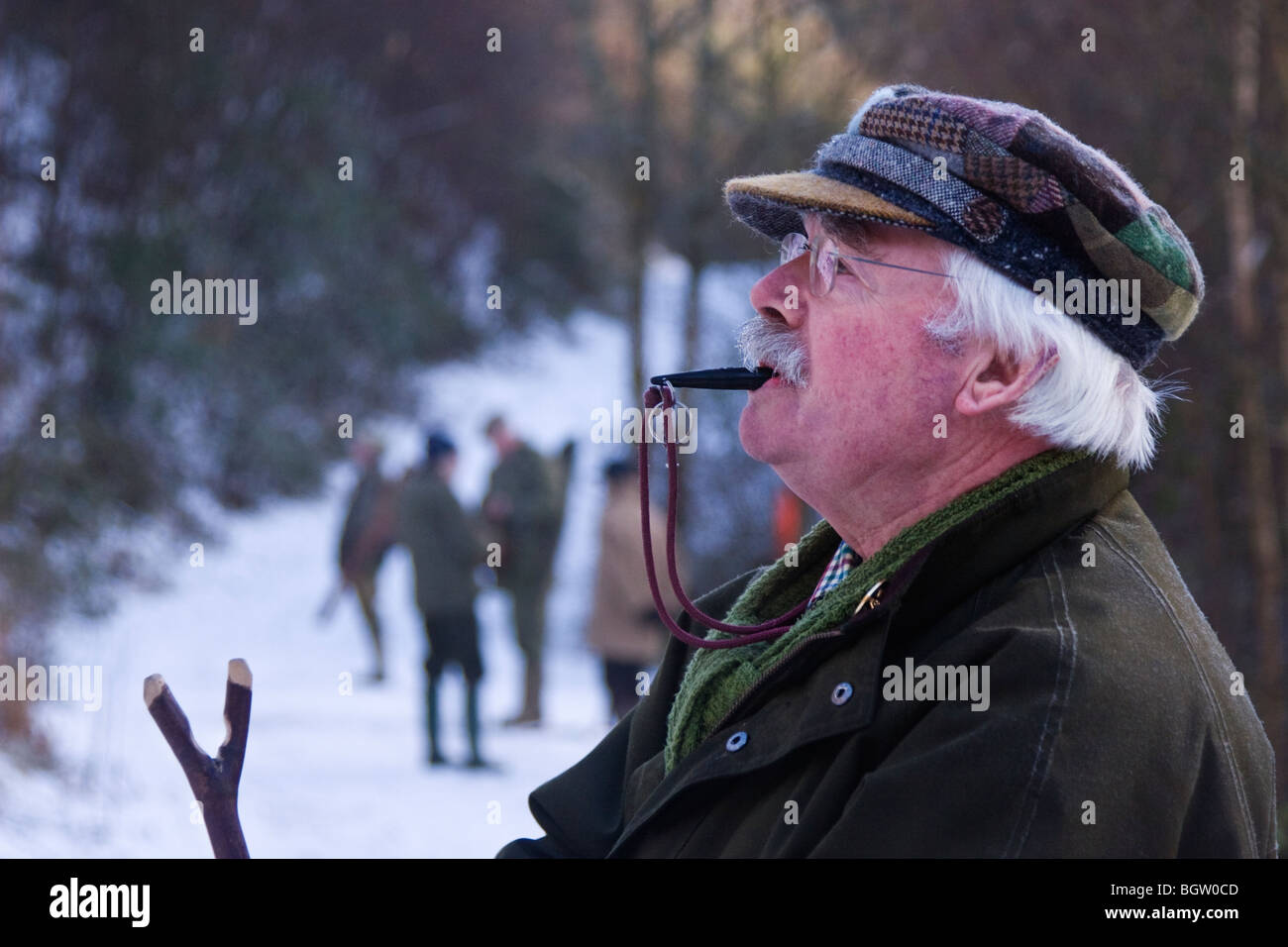 Gun dog trainer blowing his whistle to control his dog - Stock Image