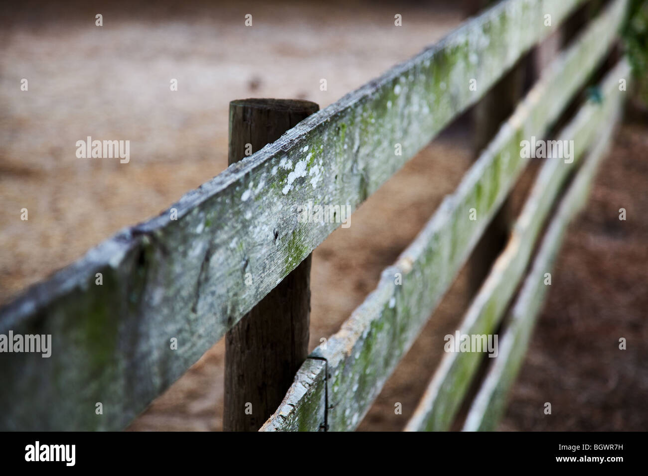 old wooden fence on a diagonal angle Stock Photo