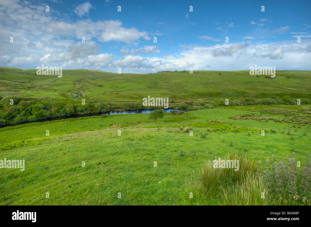 View across Water of Luce towards Milldown, Dumfries & Galloway, Scotland. Stock Photo
