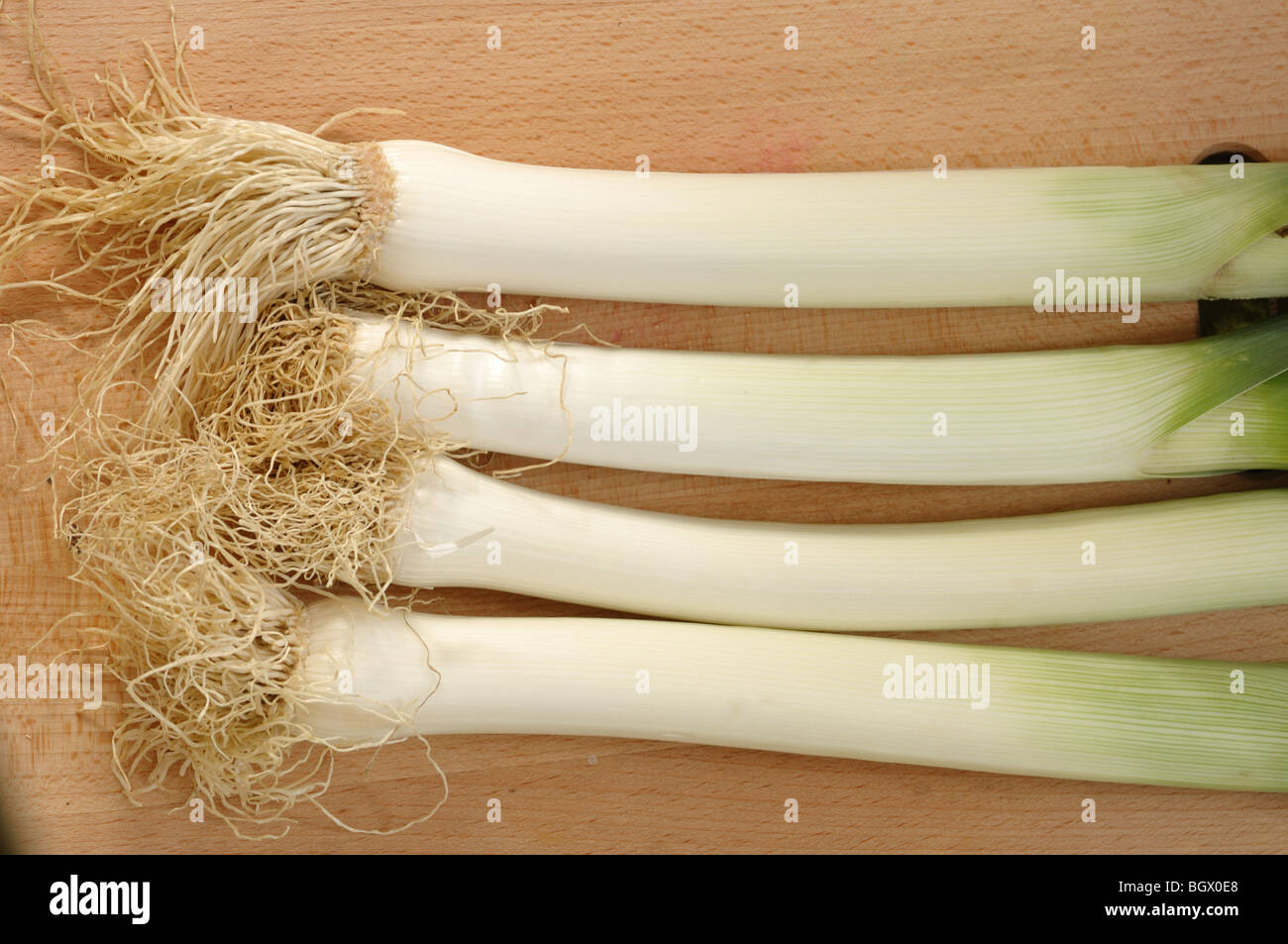 Fresh leek with the roots - Stock Image