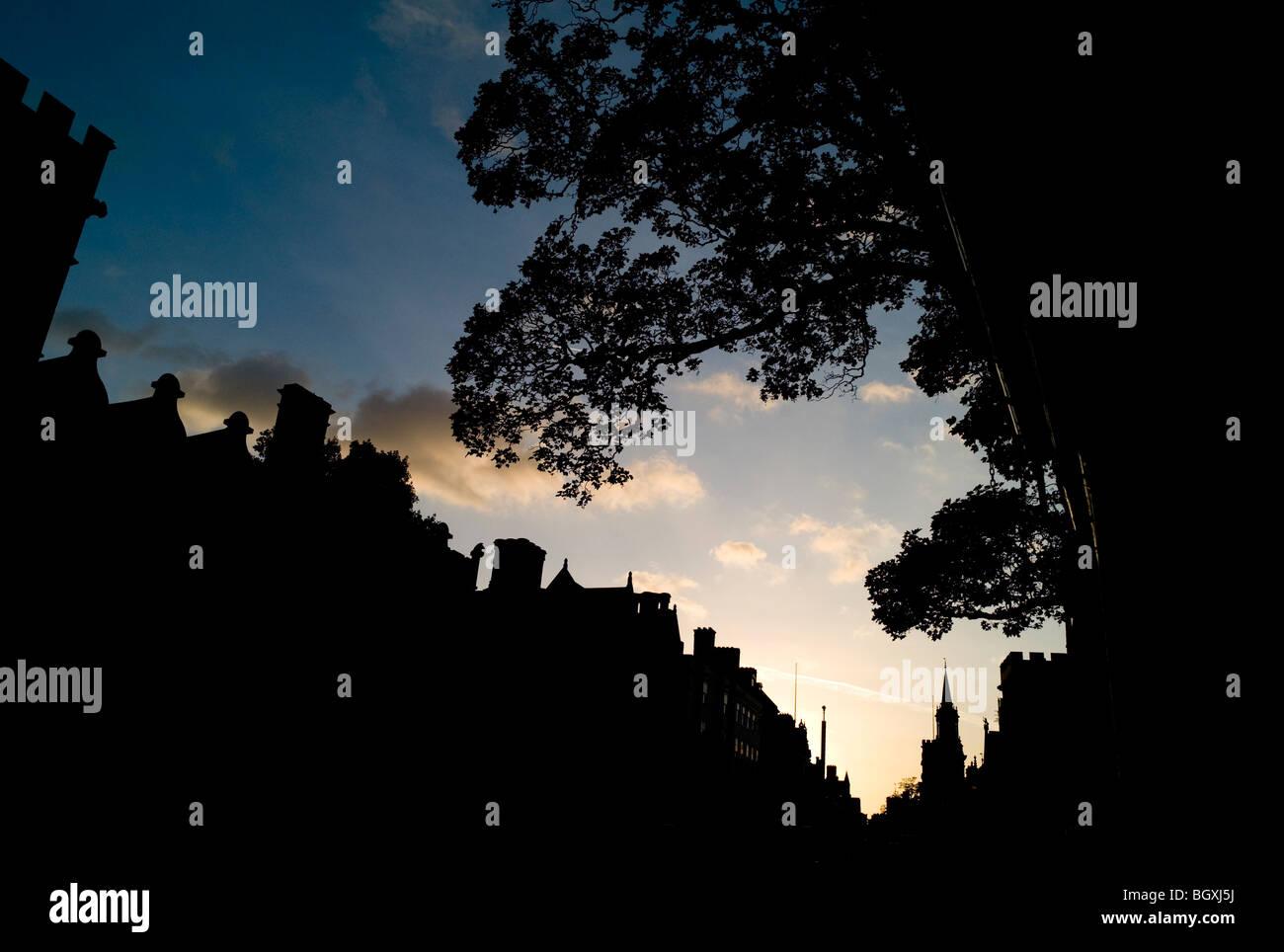 University Silhouette Architecture Stock Photos