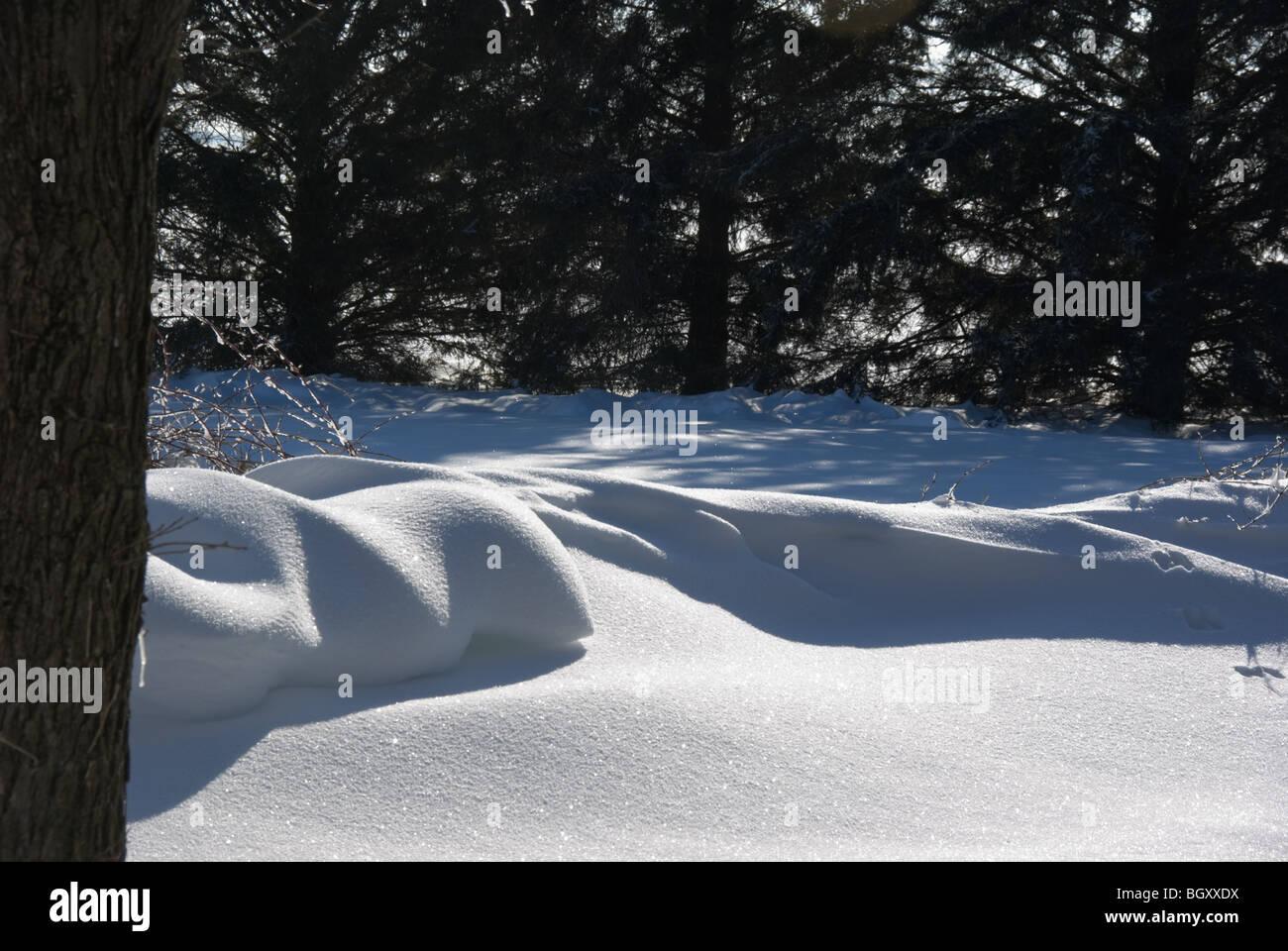 A wintery snowdrift scene - Stock Image