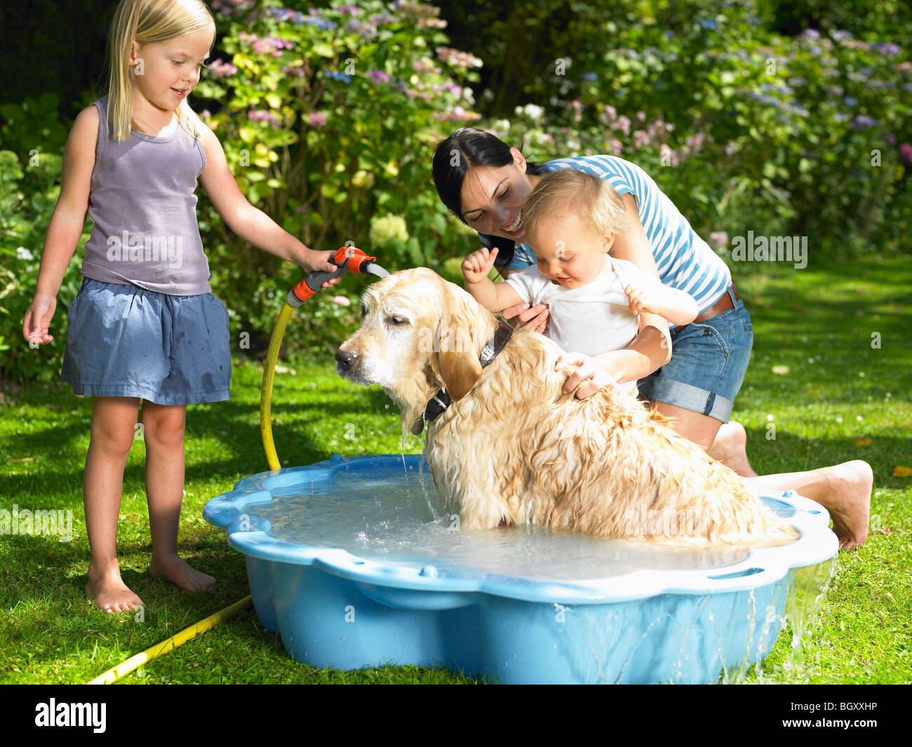 Mother, daughter and son washing the dog Stock Photo