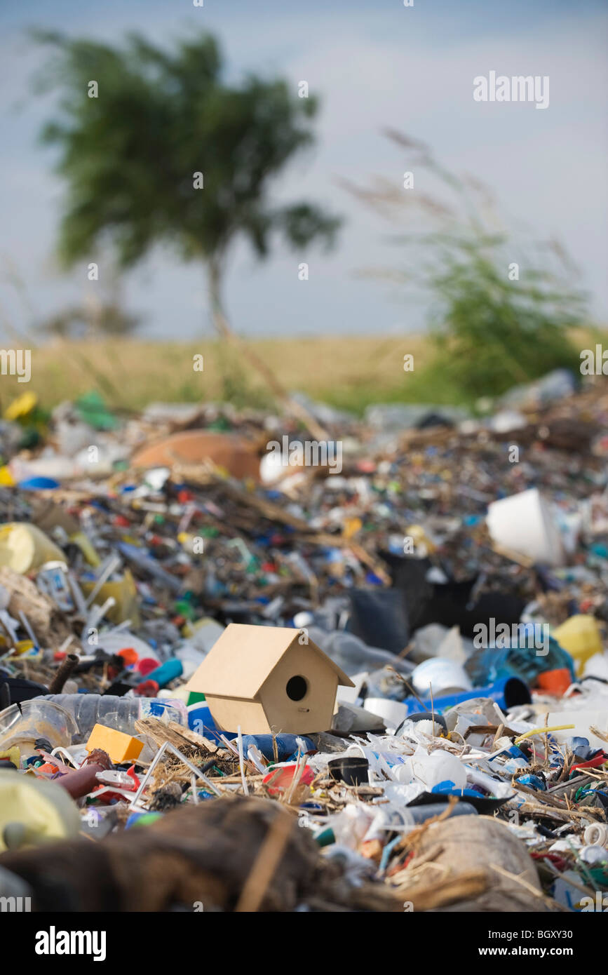 Birdhouse on ground surrounded by landfill trash Stock Photo
