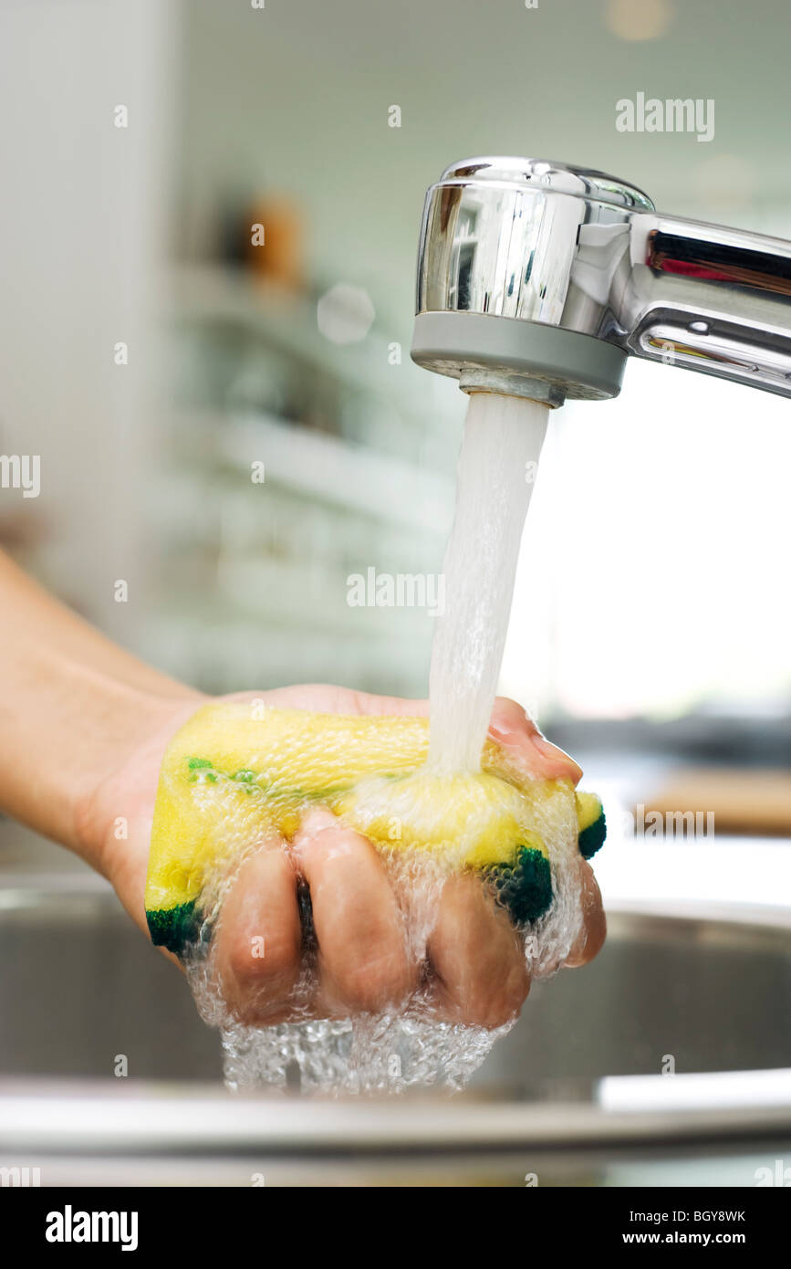 Person rinsing sponge under kitchen faucet - Stock Image