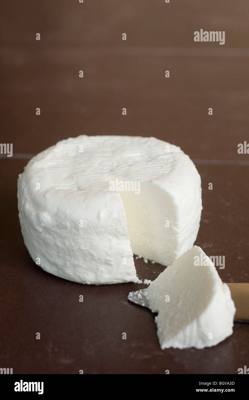 Fresh soft goat cheese from Tarn, France - Stock Image