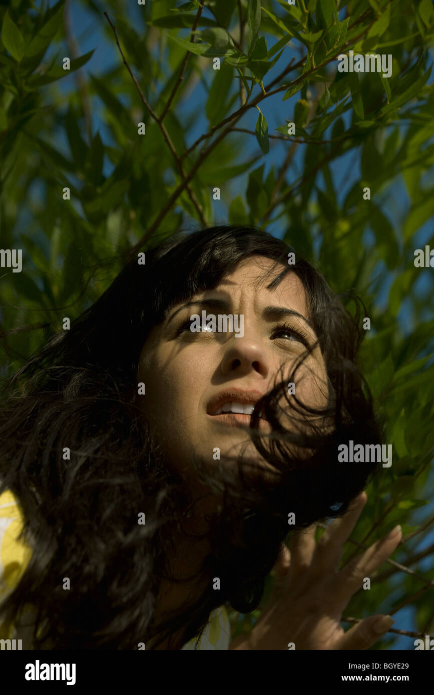 Young woman coming through foliage, looking away and furrowing brow - Stock Image