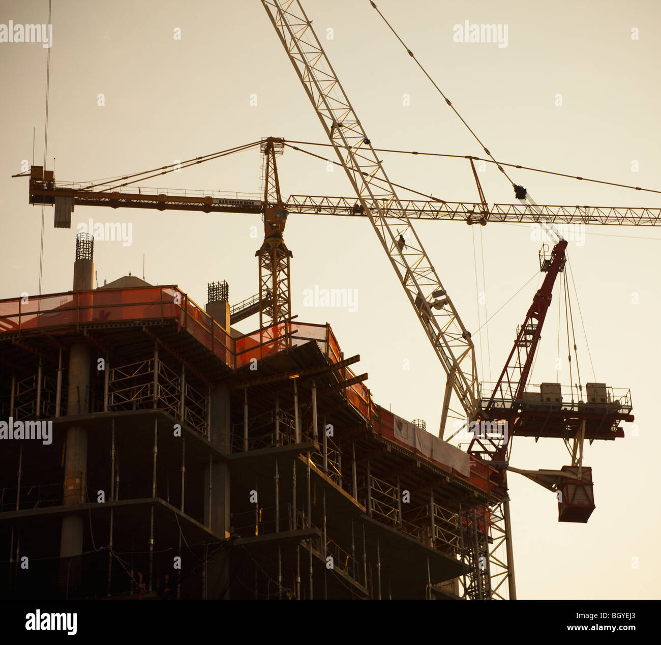 Cranes working - Stock Image