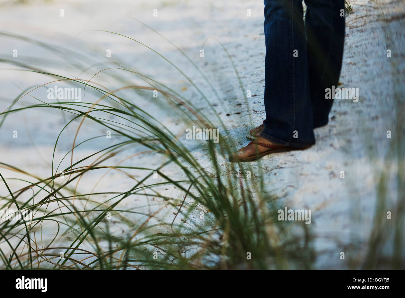 Female walking on beach, low section - Stock Image