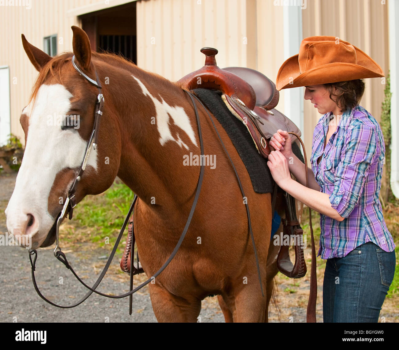 Woman putting saddle on horse Stock Photo