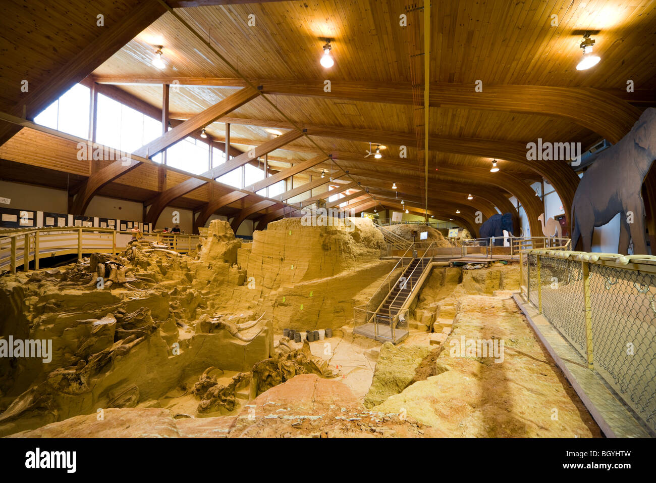 The Mammoth Site Museum, Hot Springs SD. Interior view of the bonebed with mammoth bones tusks fossils in paleontology - Stock Image