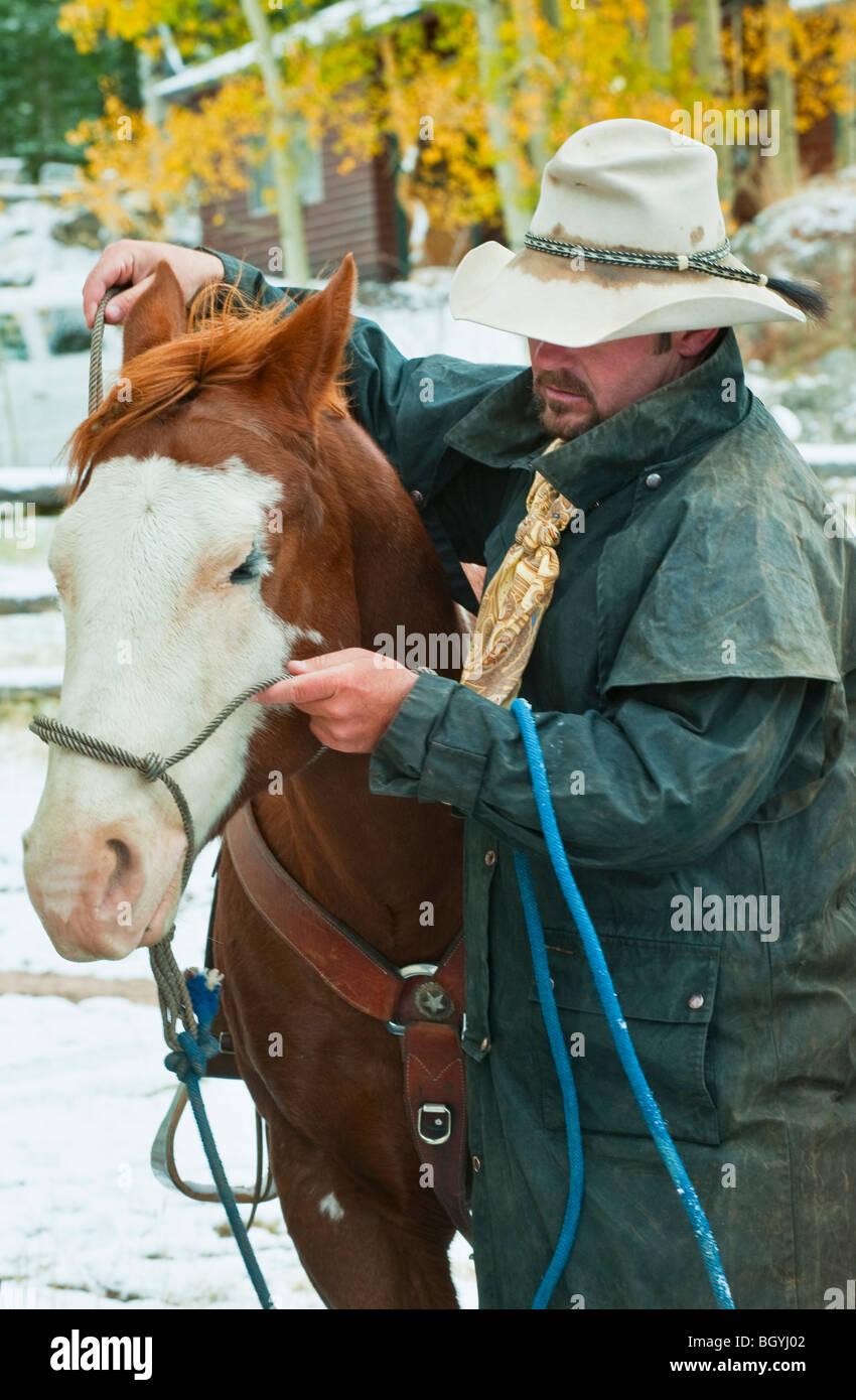 Man putting bridle on horse - Stock Image