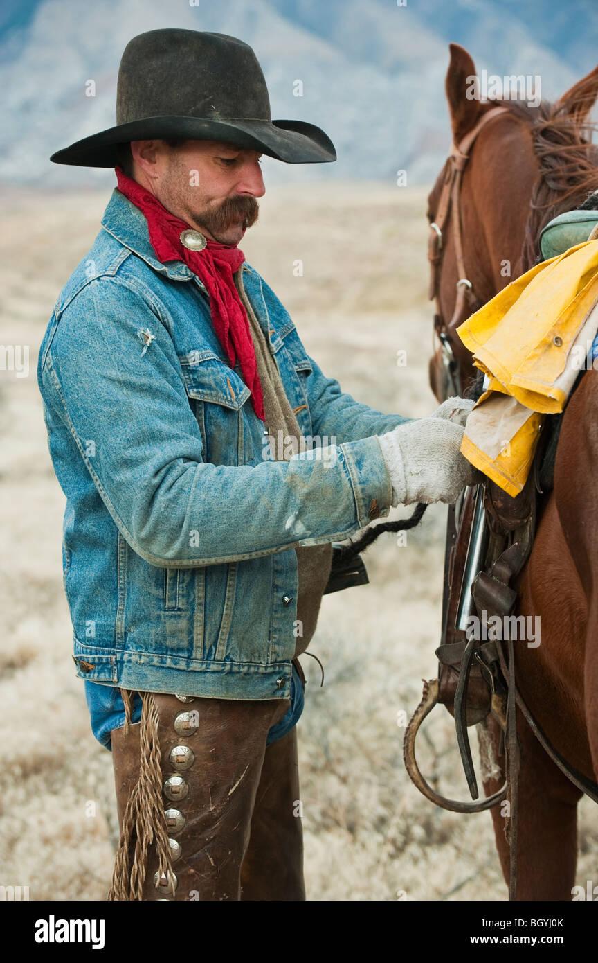 Man adjusting saddle on horse - Stock Image