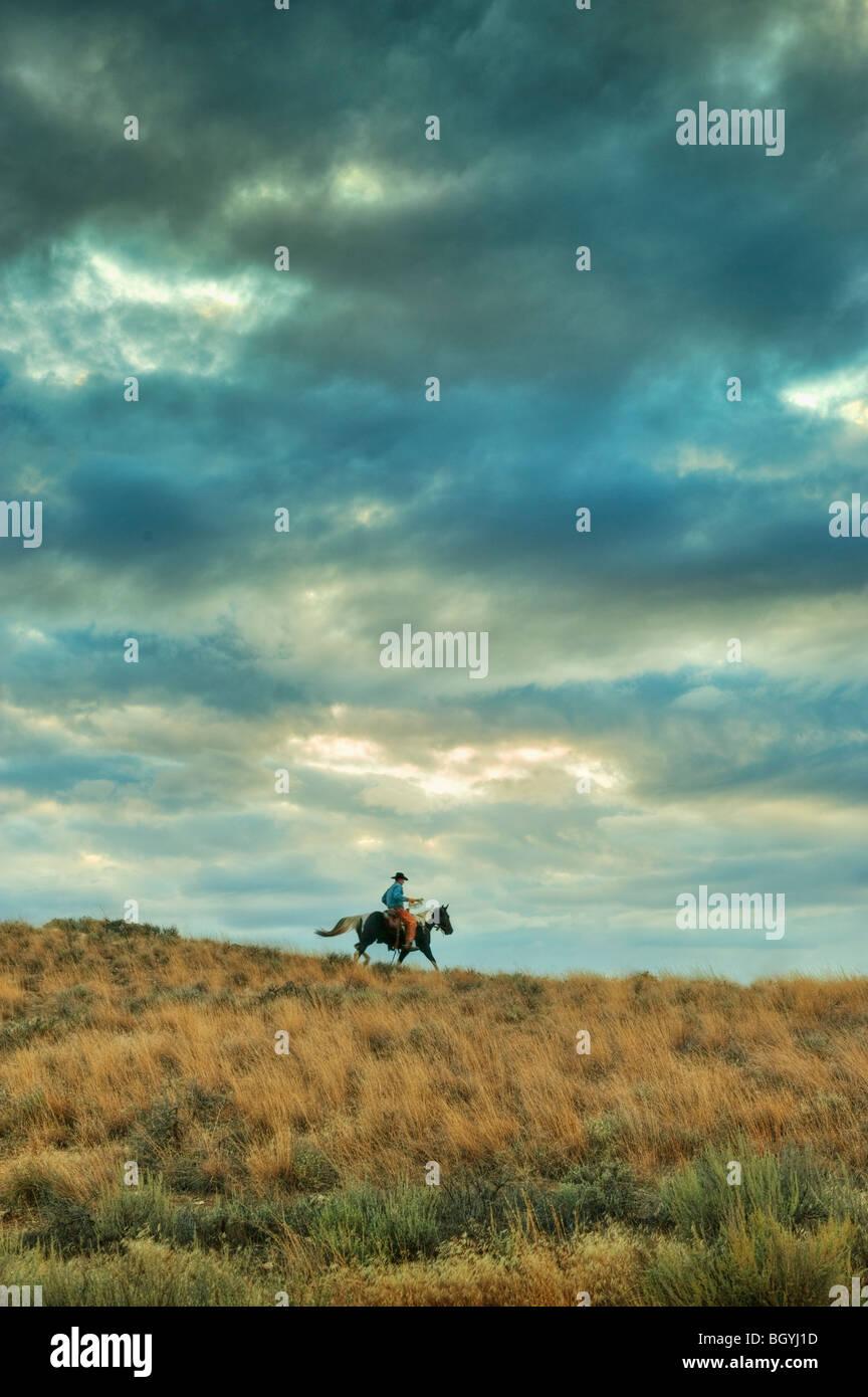 Horseback rider - Stock Image