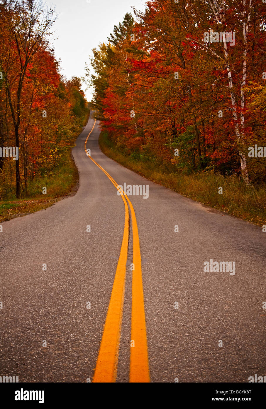 Road in autumn - Stock Image