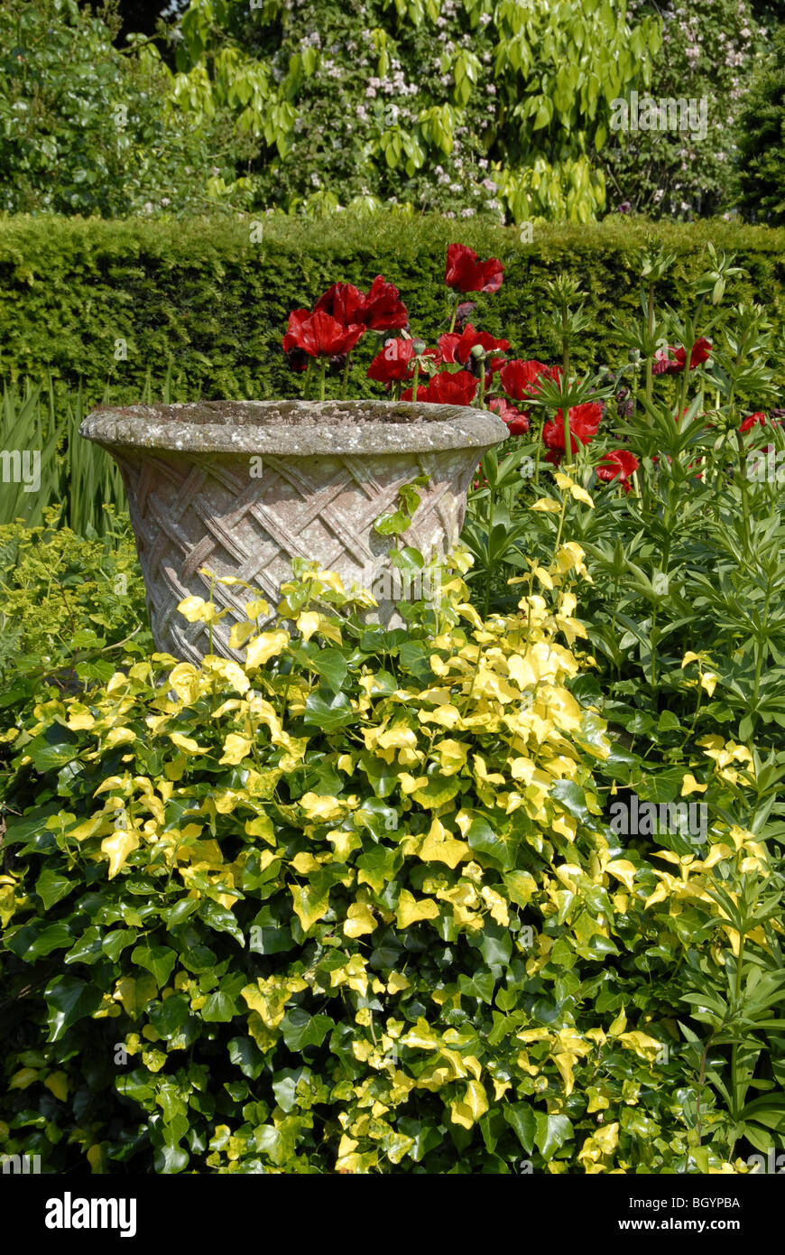 An English country garden scene with a concrete urn or large vase surrounded by plants and flowers. - Stock Image