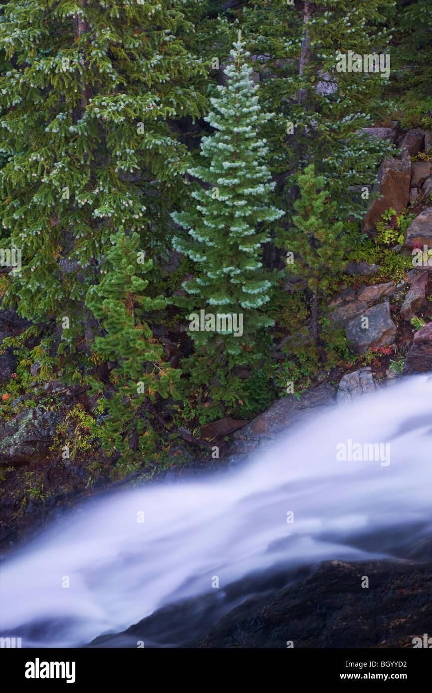Alberta Falls, Rocky Mountain National Park, Colorado. - Stock Image