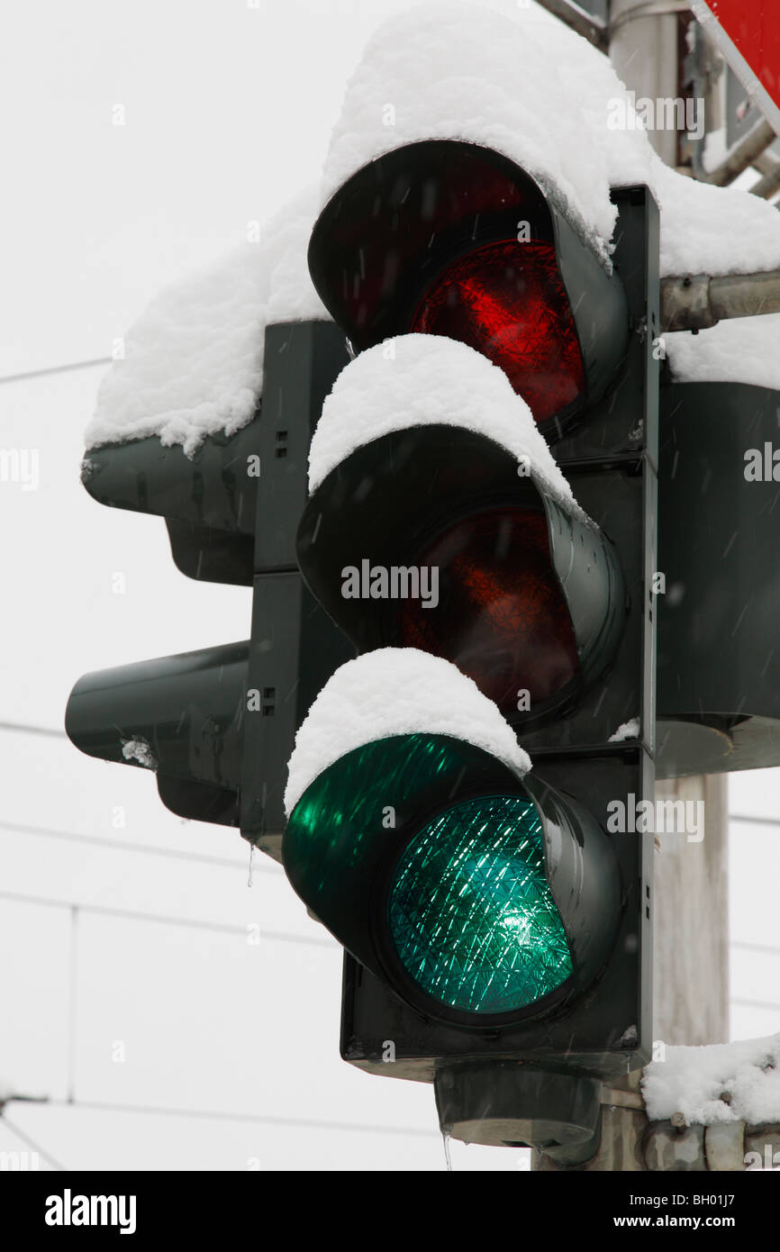 snow-covered traffic lights - Stock Image