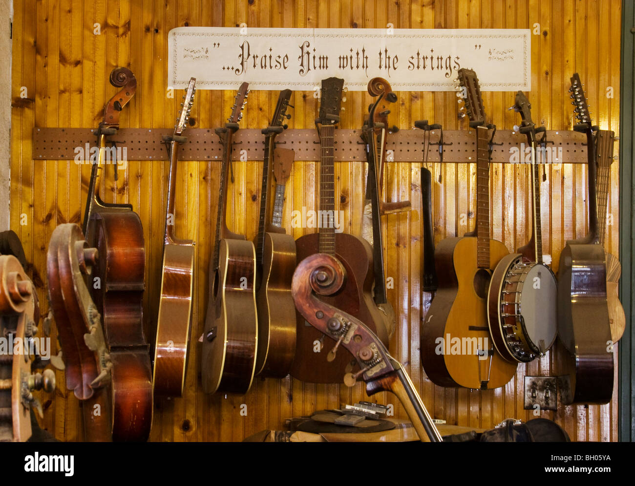 Stringed instruments lined up for repair in a luthier's shop. - Stock Image