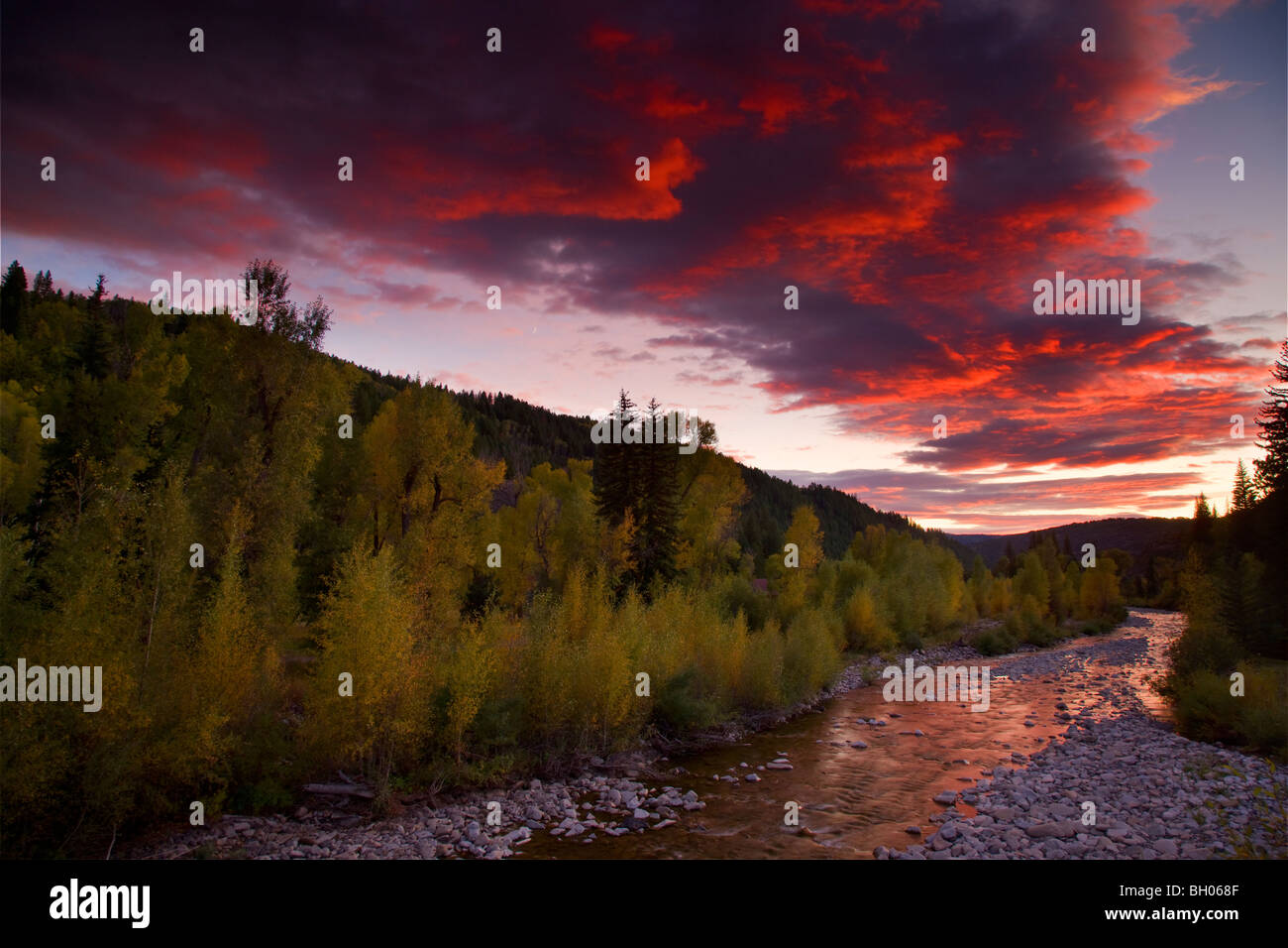 Anthracite Creek with Fall colors at sunset along Kebler Pass Road, Colorado. - Stock Image