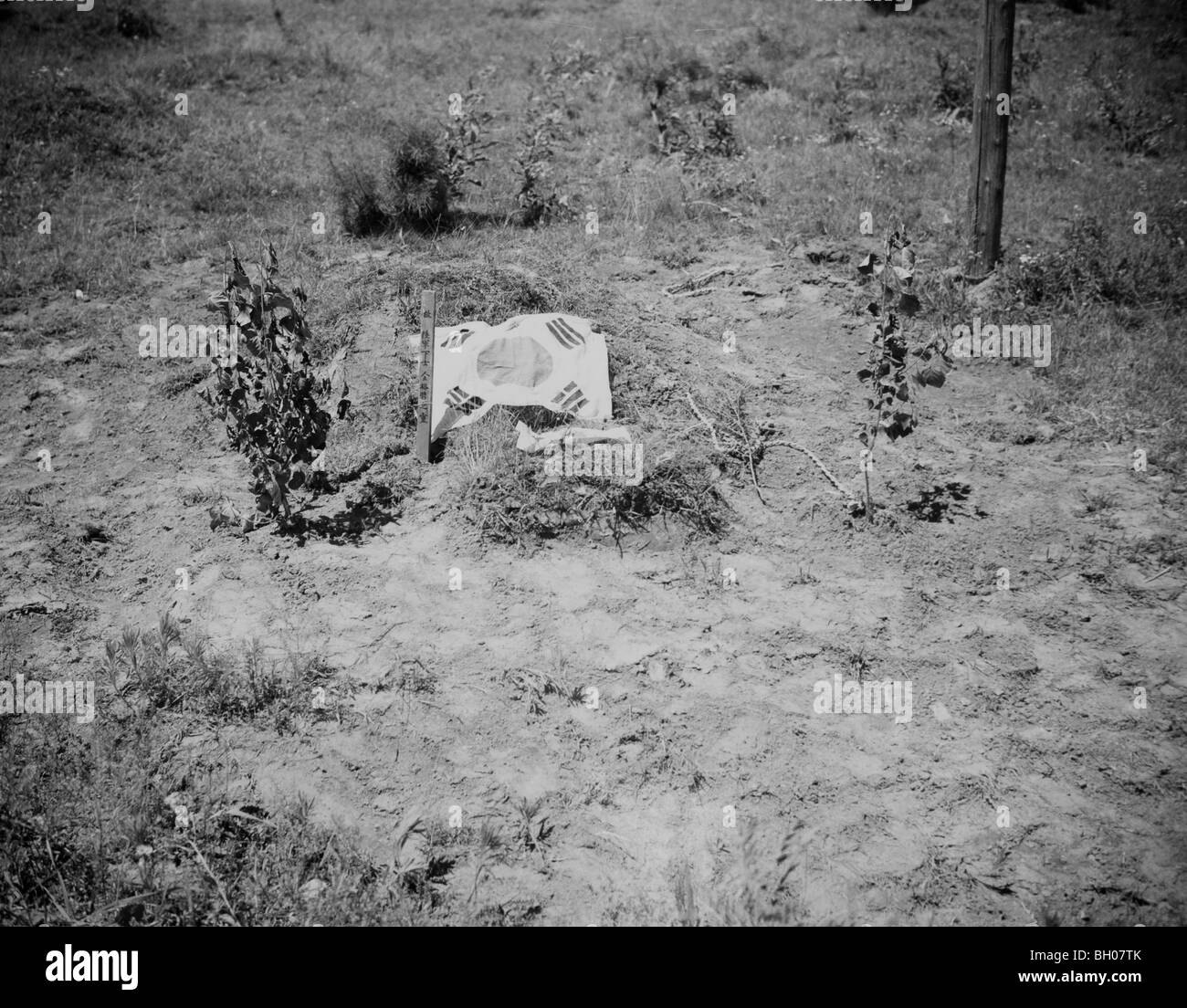The Korean Flag marks the roadside grave of the South Korean Soldier killed in the communist led invasion of  South - Stock Image
