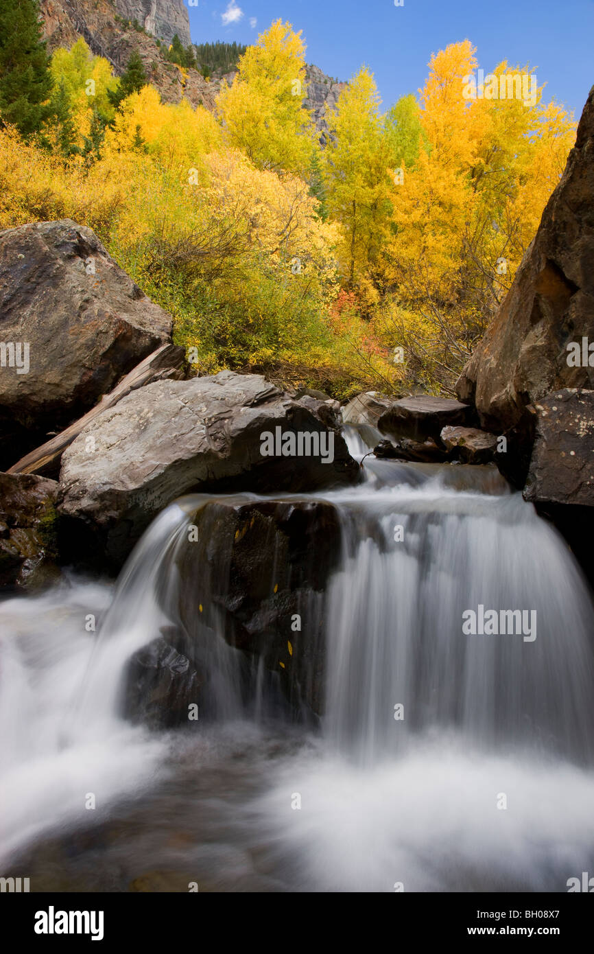 Autumn colors along Bear Creek in the San Juan Mountains, near Ouray, Colorado. - Stock Image