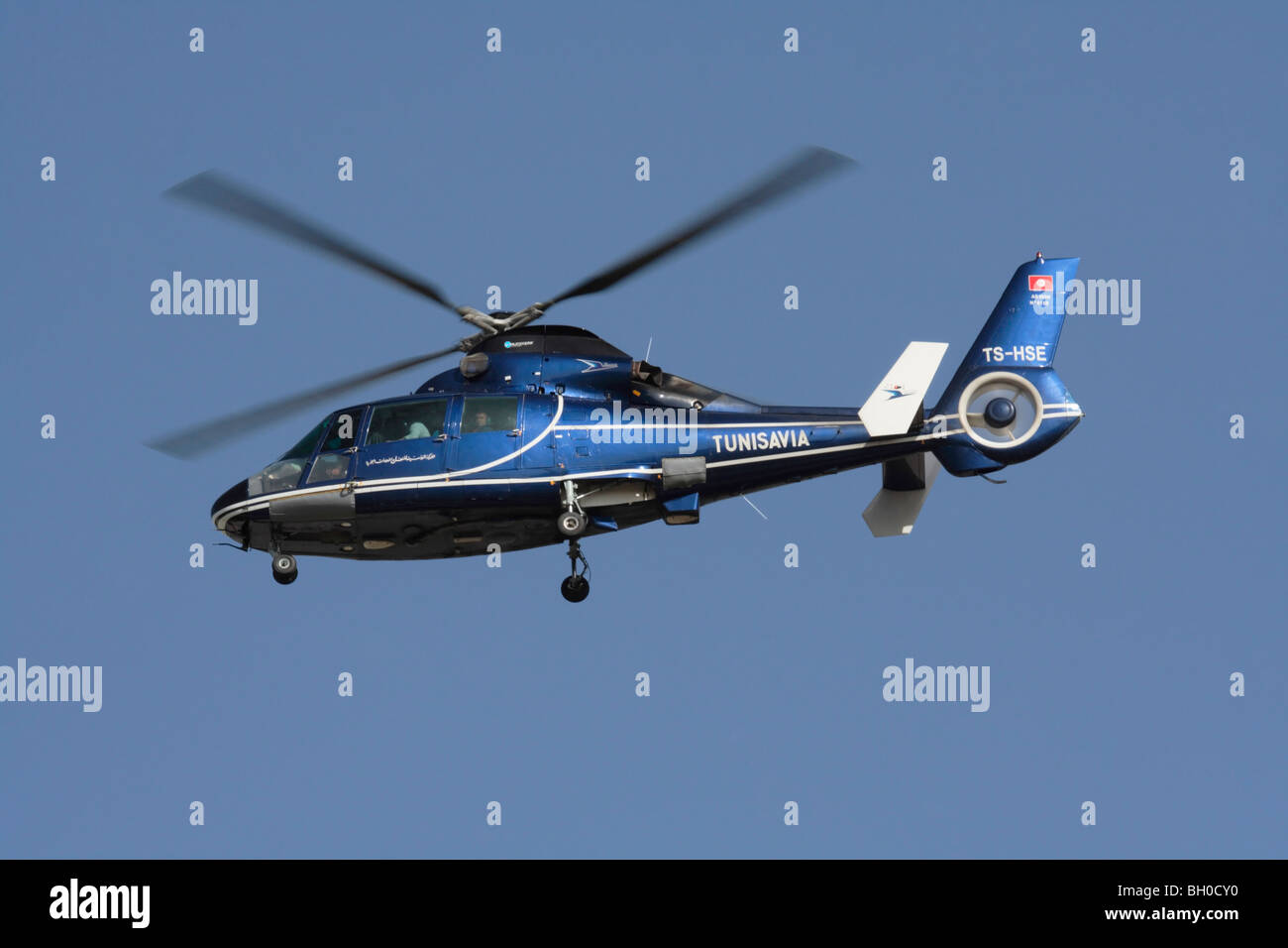 Eurocopter AS365 Dauphin helicopter operated by Tunisavia Stock Photo