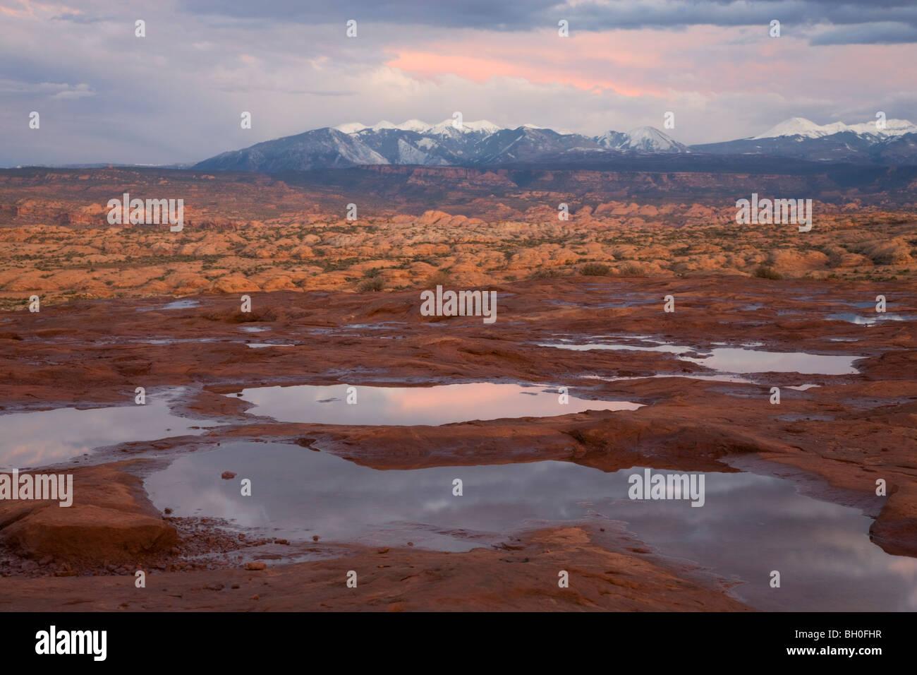 Potholes full of rain water, La Sal Mountains Viewpoint, Arches National Park, near Moab, Utah. - Stock Image