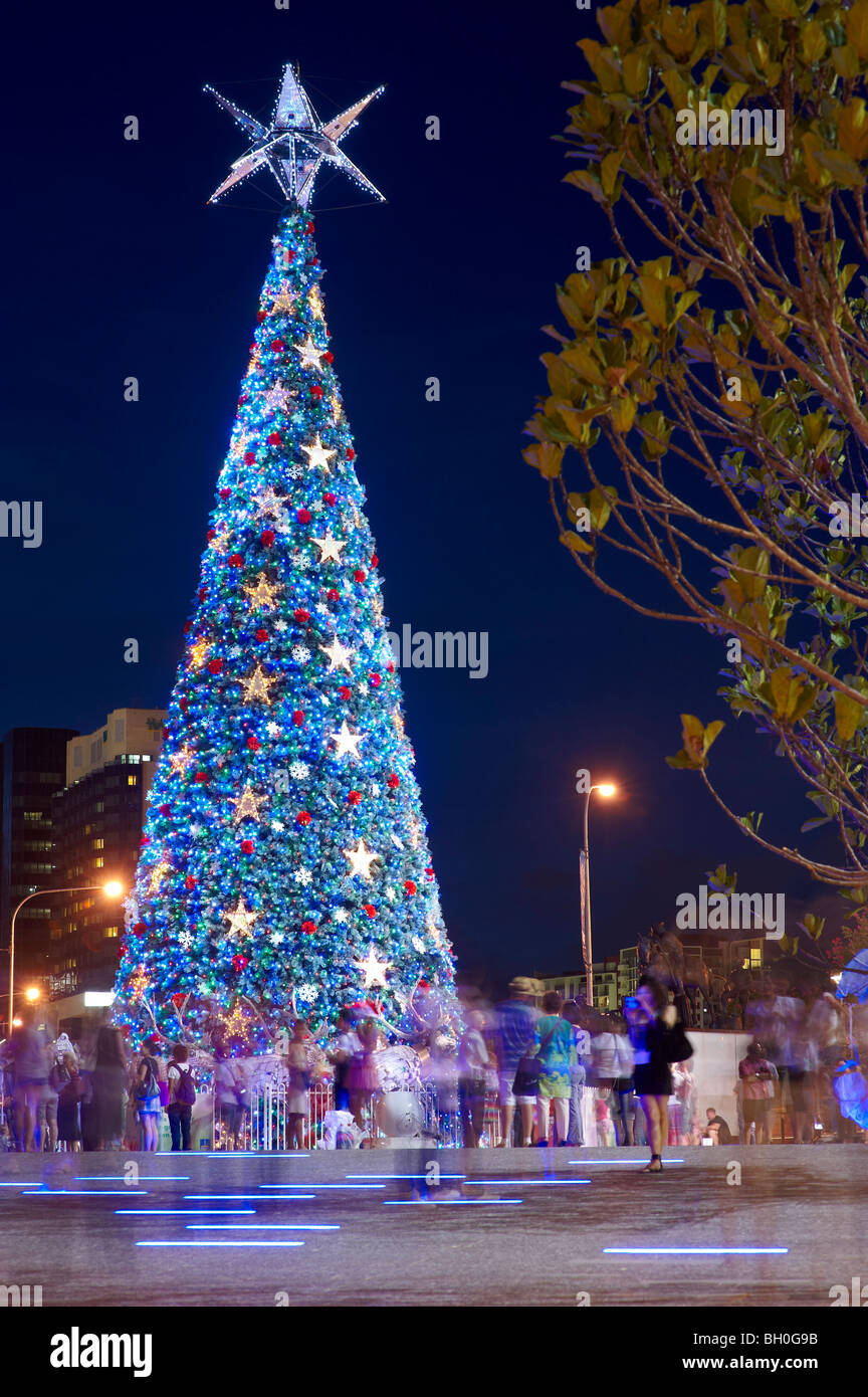 worlds largest solar powered christmas tree at king george square brisbane australia