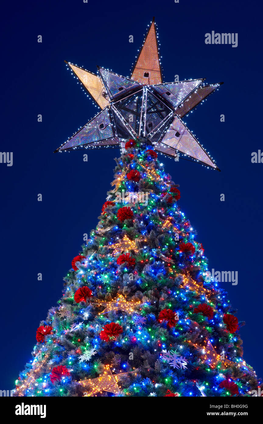 Worlds largest Solar powered Christmas tree Brisbane Australia - Stock Image