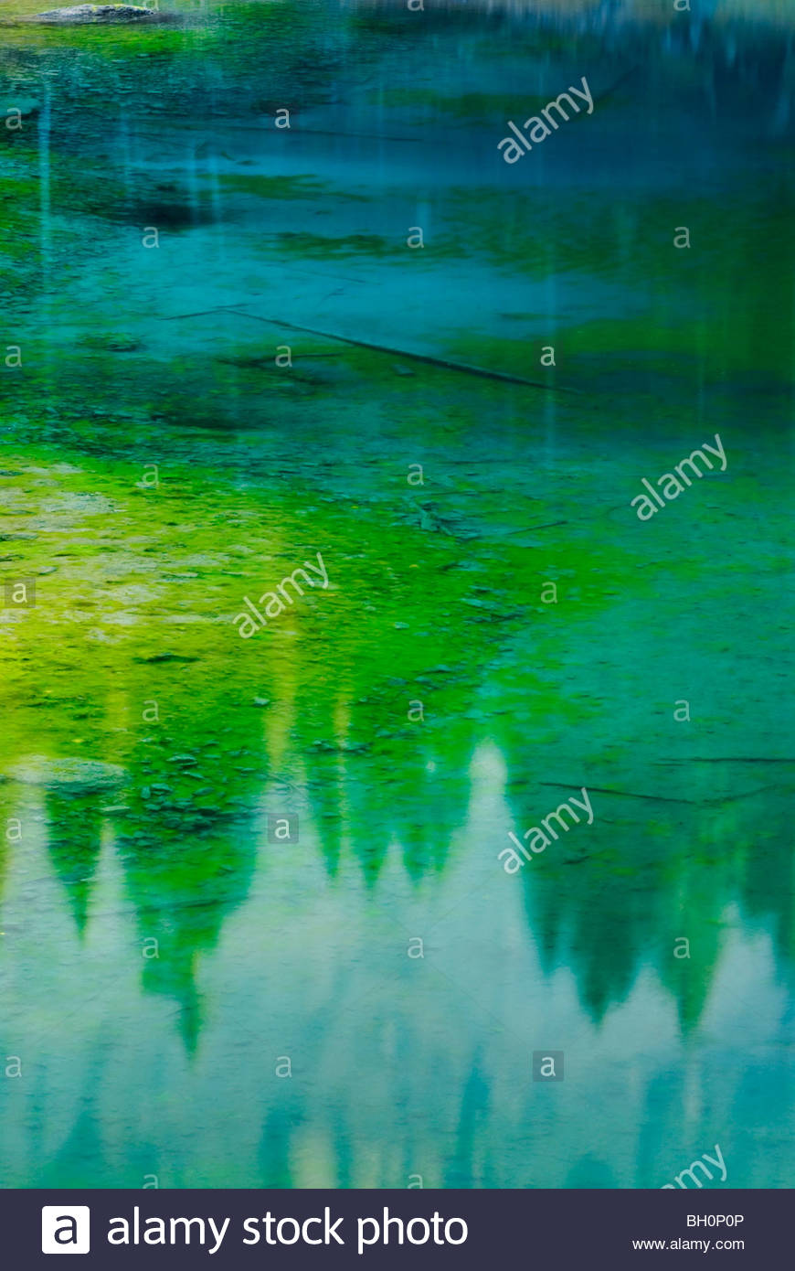 Reflexion on the surface of the lake Karersee, Valley Eggental, South Tyrol, Italy, Europe - Stock Image