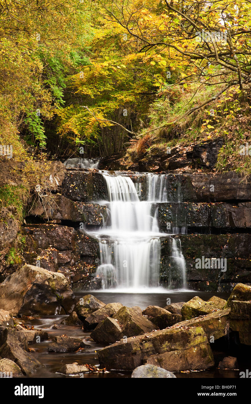 Bowlees and Gibsons Cave Nature Reserve, Newbiggin, Teesdale, County Durham - Stock Image