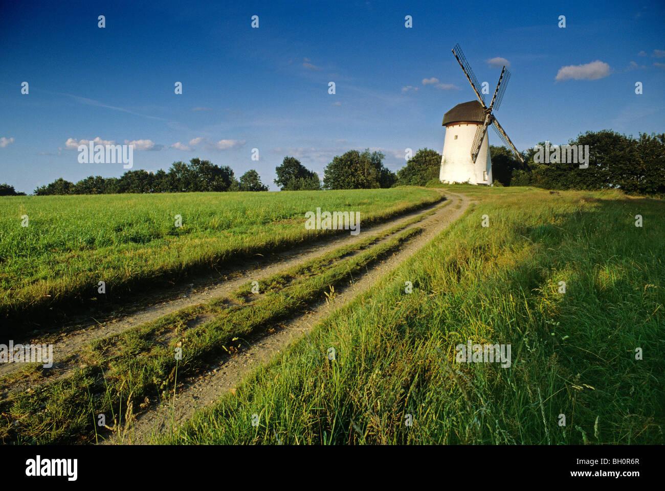 Engelsberg windmill, near Krefeld, Lower Rhine Region, North Rhine-Westphalia, Germany - Stock Image