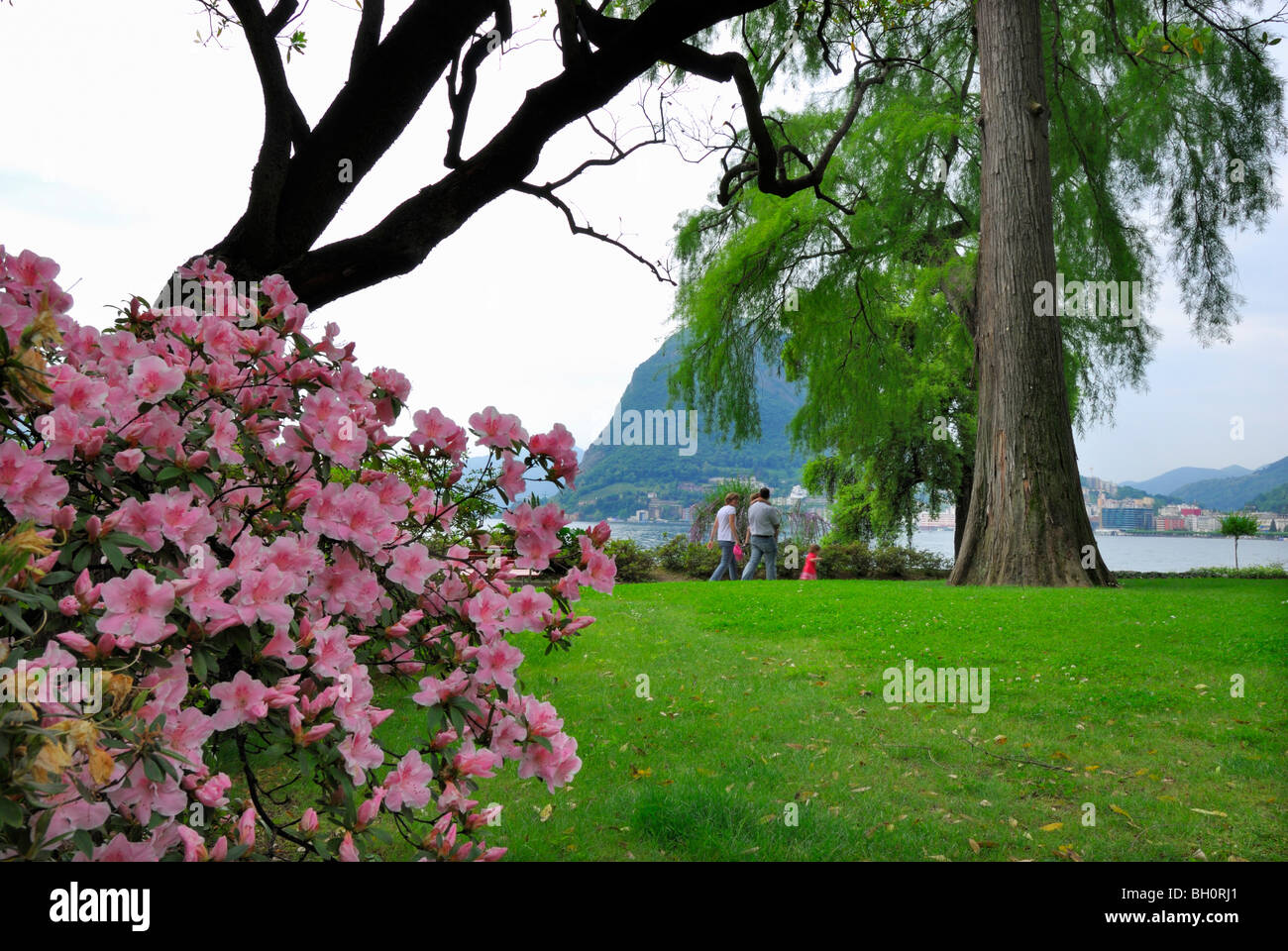 Family walking through city park of Lugano with rhododendron in the foreground, Lugano, Ticino, Switzerland Stock Photo