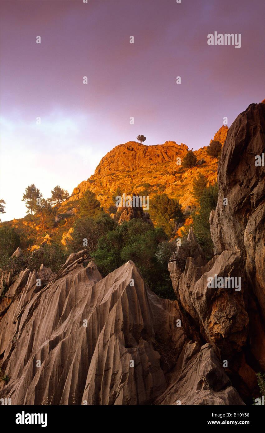 Europe, Spain, Majorca, near Sa Calobra, landscape - Stock Image
