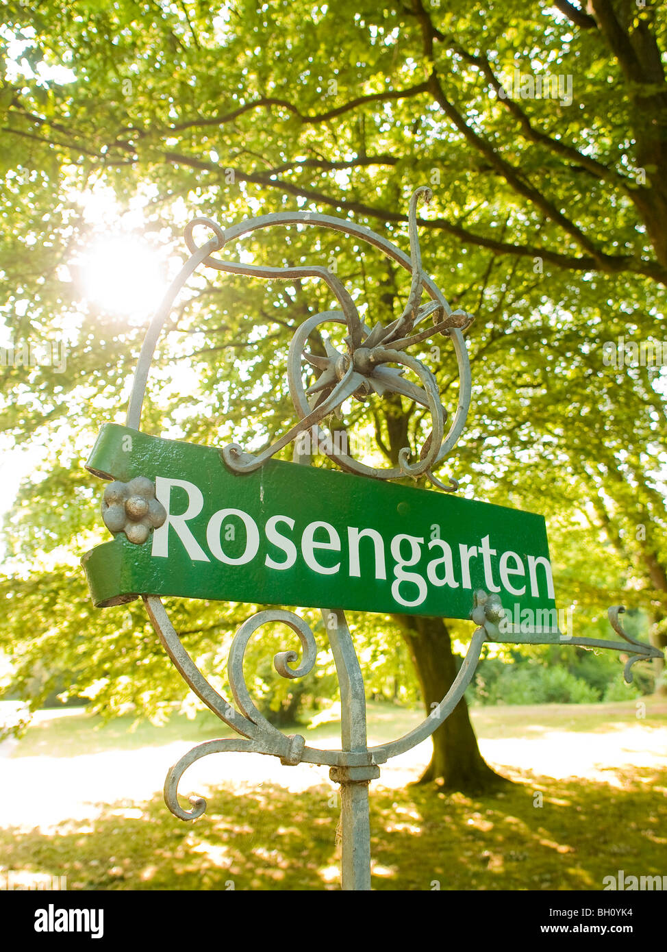 Rose Garden in the Ohlsdorf Cemetery, Hanseatic City of Hamburg, Germany Stock Photo