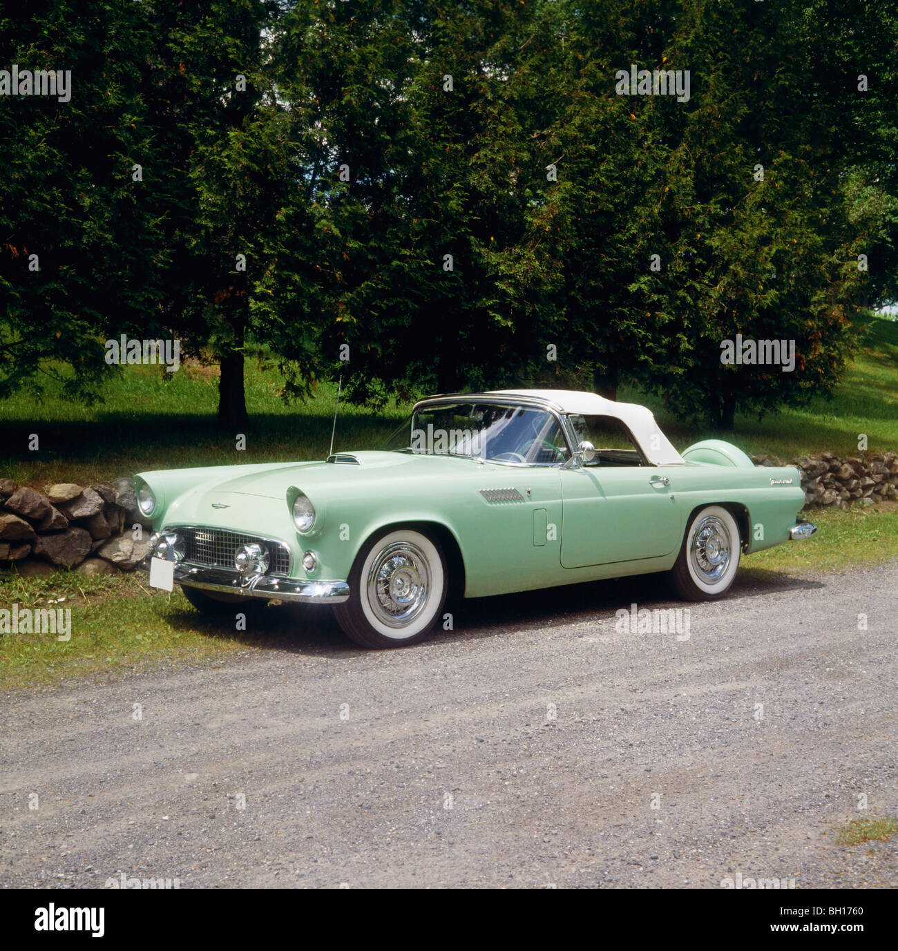 Vintage 1956 Ford Thunderbird car, Waterloo, Quebec, Ontario Stock Photo