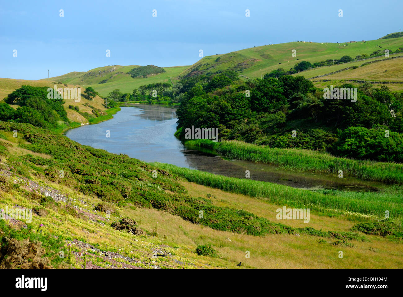 Inland loch at St Abbs Head, Borders, Scotland - Stock Image