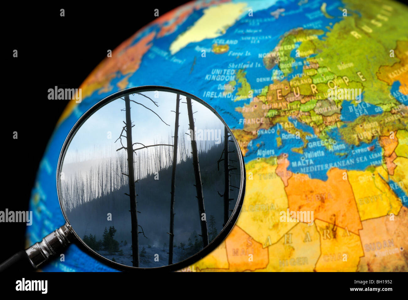 Burned trees after forest fire seen through magnifying glass held against illuminated terrestrial globe - Stock Image
